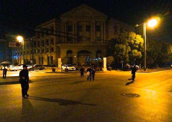 脱缰马儿国道奔跑或被车灯惊吓,杭州警方出动13人护送离开