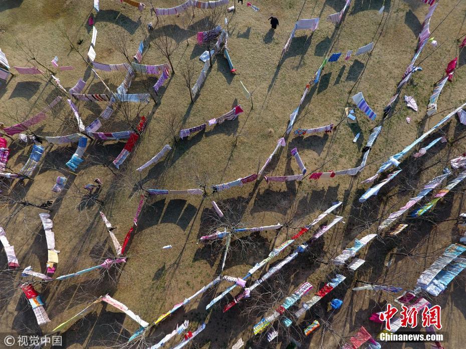 郑州艳阳天大学生齐晒被子 校园草坪变迷宫
