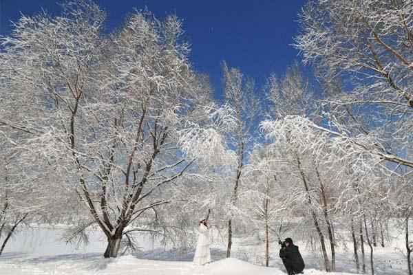 沈阳雪后天晴景色美丽吸引民众观赏拍照