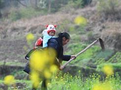 重庆各地春暖花开 春暖农事忙