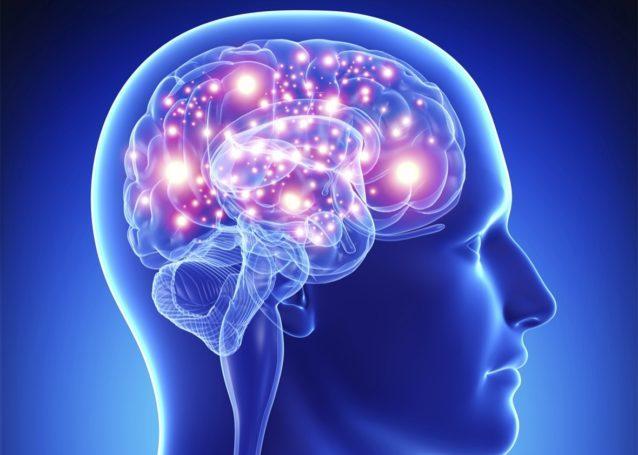 这家创企研发大脑冷冻技术 但要在生前开始保存