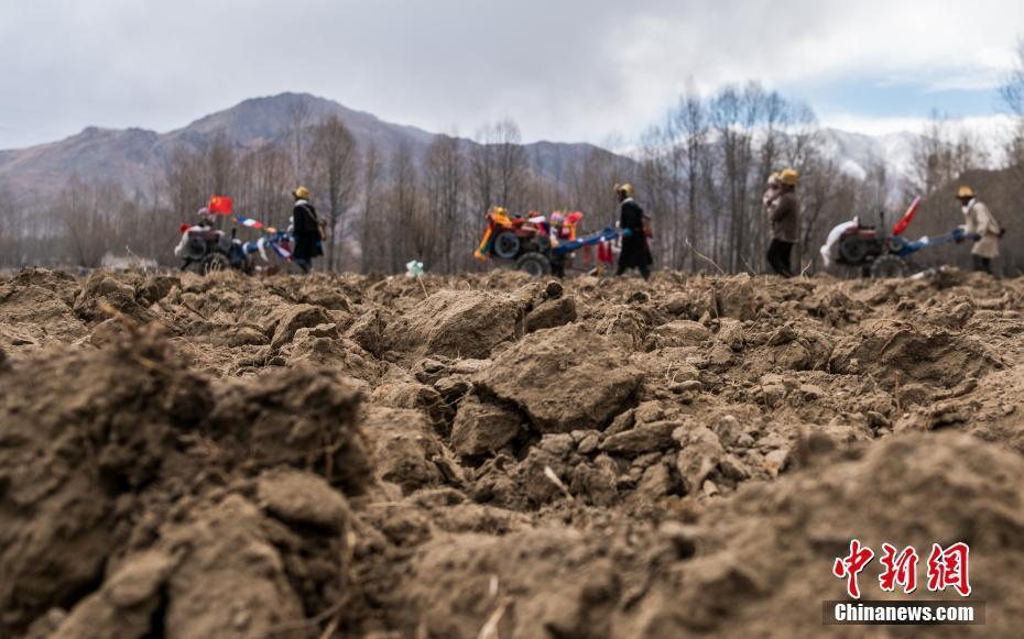 西藏迎来传统春耕仪式