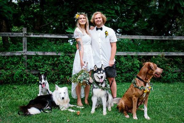 澳爱心人士举办节俭婚礼 其爱犬担当摄像师