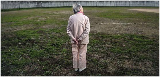 日本监狱成老年女性避风港!中国网友:广场舞要不要了解一下