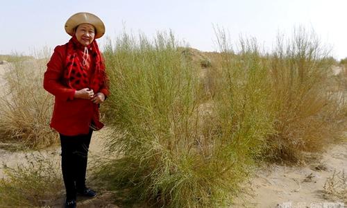 易解放被广袤的沙漠所震撼,决心在内蒙古植树造林