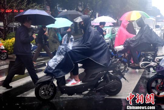 图为福州市民在雨中出行。 张斌 摄