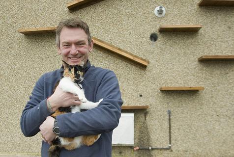 英居民外墙为猫搭梯子 完美避免猫狗相争