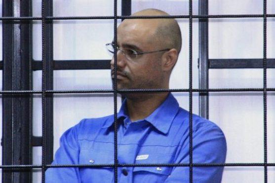 东山再起?卡扎菲次子将参加利比亚总统大选