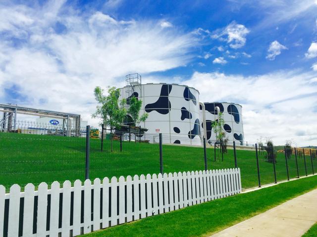 蒙牛陷入跑马圈地之殇,求品质的乳业公司却重营销?