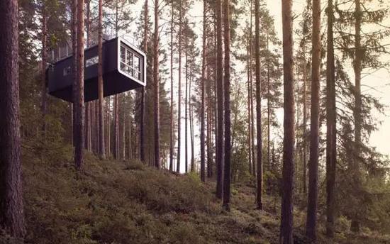 全球8间最美树屋 中国的这间颜值爆表