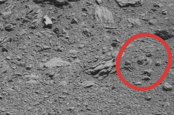 This raw Cursiosity camera image shows a Jabba the Hutt-like rock formation.jpg