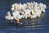 印尼女子背200个空壶逆流而上 为社区打干净水