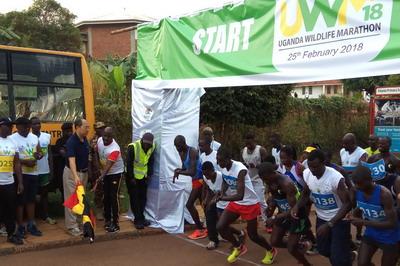 驻乌干达大使郑竹强为乌干达野生动物保护主题马拉松挥旗开跑