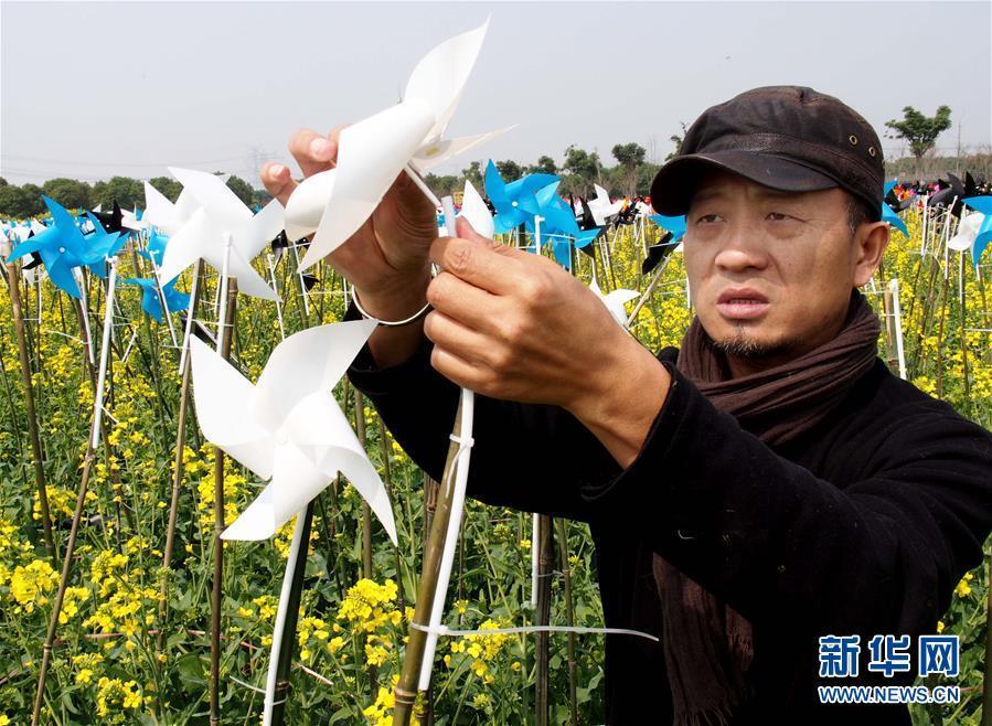 """上海:油菜花地绘就""""海上丝绸之路"""""""