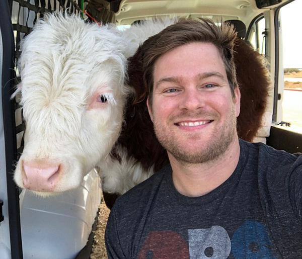 暖心!美国男子驱车3500公里送宠物牛就医