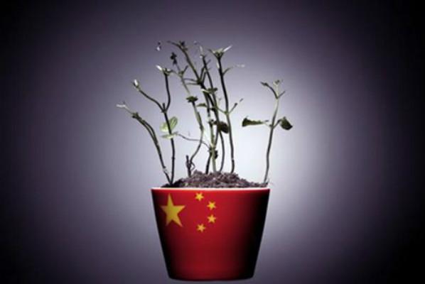 """人民日报人民时评:读懂中国经济的""""含金量"""""""