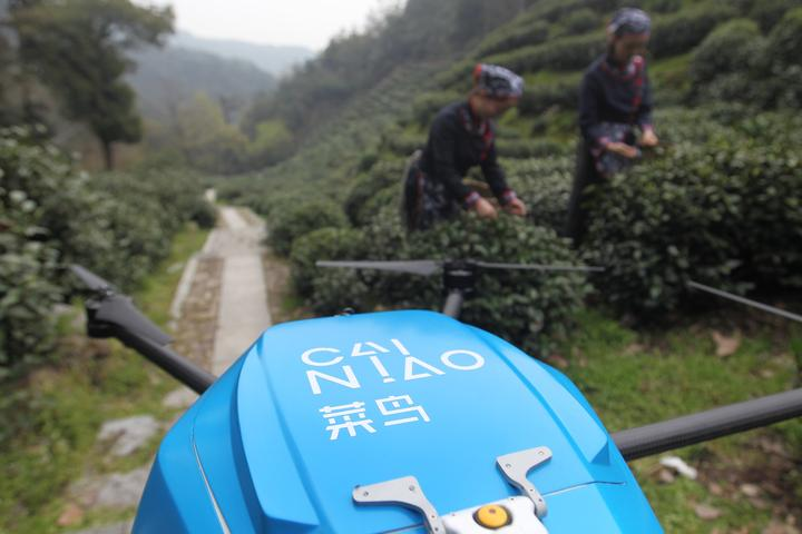 狮峰龙井开采:采茶工爬山一小时 菜鸟无人机只需两分钟