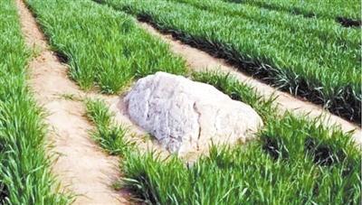 """中国最小的""""山""""仅0.7米?专家:可能不是山 像石灰岩"""