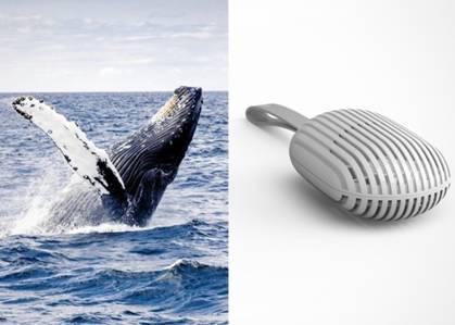 设计师设计流线型鲸鱼肚风扇 方便携带省空间