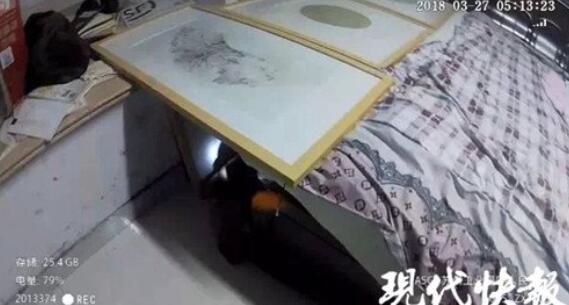 """苏州一老赖家中搜出13本房产证,为躲避法官搭""""隧道""""藏身"""