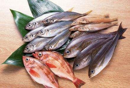 适合孕妇吃的海鱼