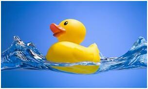 选玩具须谨慎!研究称浴室橡皮玩具可滋生细菌