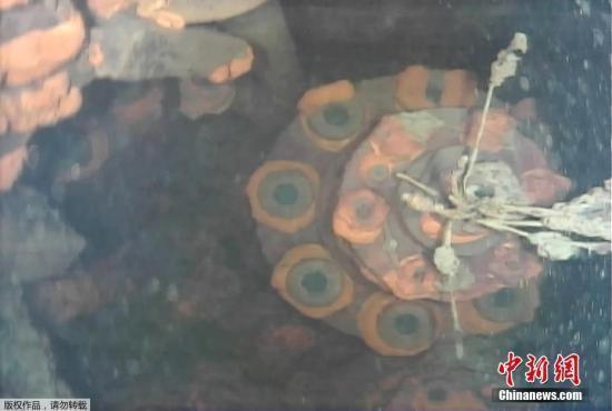 研究表明日本福岛第一核电站污水仍持续流入外海