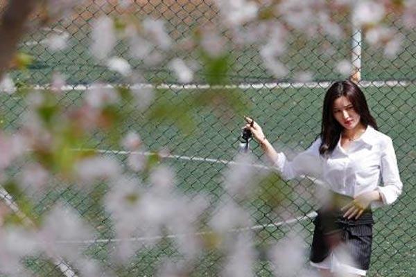 上海阳光相伴 民众户外赏花踏春