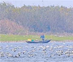 湖南东洞庭湖等4处国家级自然保护区范围调整