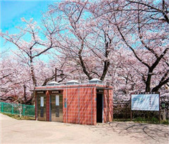 摄影师拍摄日本各地奇形怪状厕所