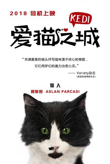 《爱猫之城》海报发布 七大异域风情猫萌力来袭