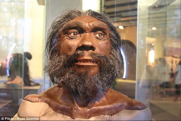 西非人拥有肿瘤免疫基因 传承自神秘人类祖先