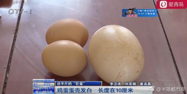 """母鸡产下近半斤重""""巨蛋"""" 敲碎后在场的人惊呆"""