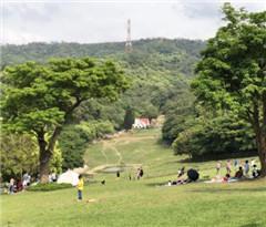 清明景区接待游客428万余人 营业收入1.12亿元