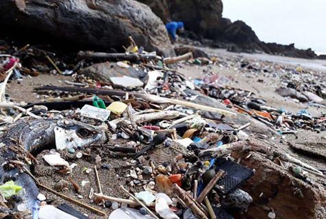 惋惜!英一沙滩昔日风景如画如今满是垃圾