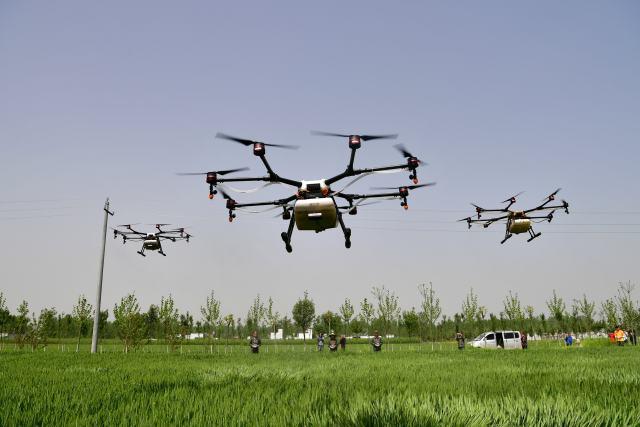 喷洒农药无人机一天可抵10人半个月