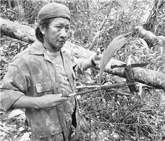 在亚马孙雨林经历绝地求生