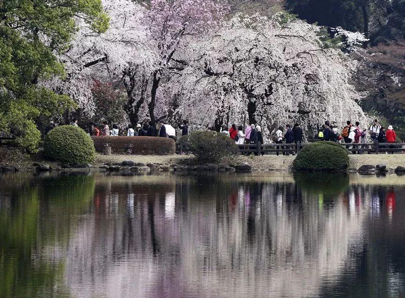 日本增税 连游客也不放过