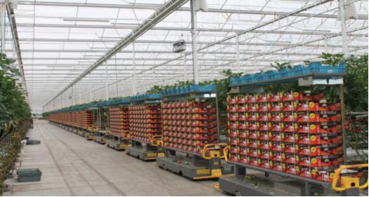 视通科技加百度AI:让农业焕发出全新的生机