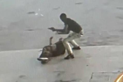 美歹徒光天化日持枪抢劫射伤一男子