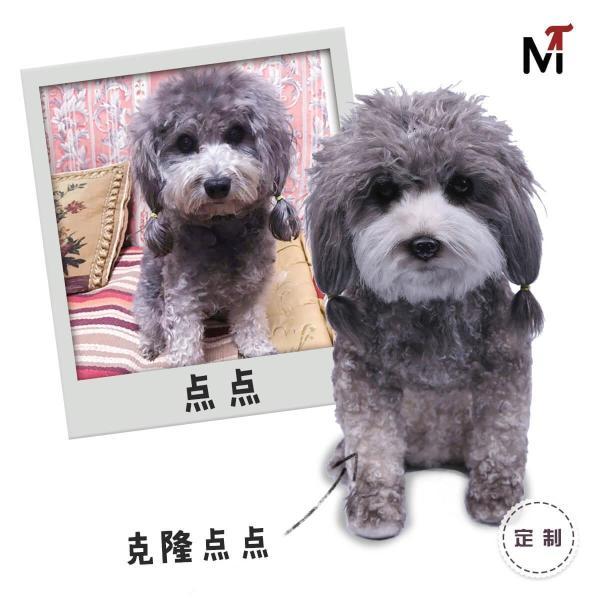 从中国制造到中国创造 可彼3D仿真克隆宠物凸显大国智慧