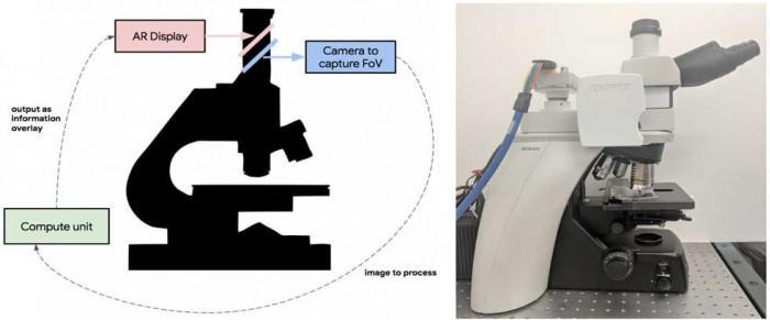结合AR和显微镜 Google将开发癌症检测新工具