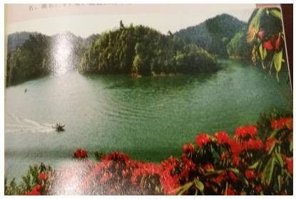 只留清气满乾坤 ——访贵州省长顺县万发养殖有限公司法人何海平