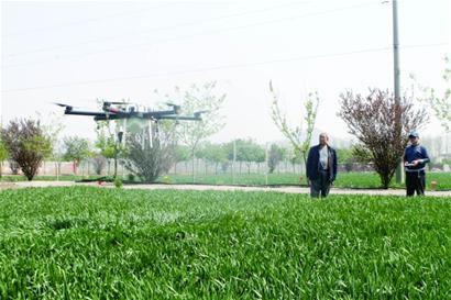 无人机喷药 抵得上80名壮汉