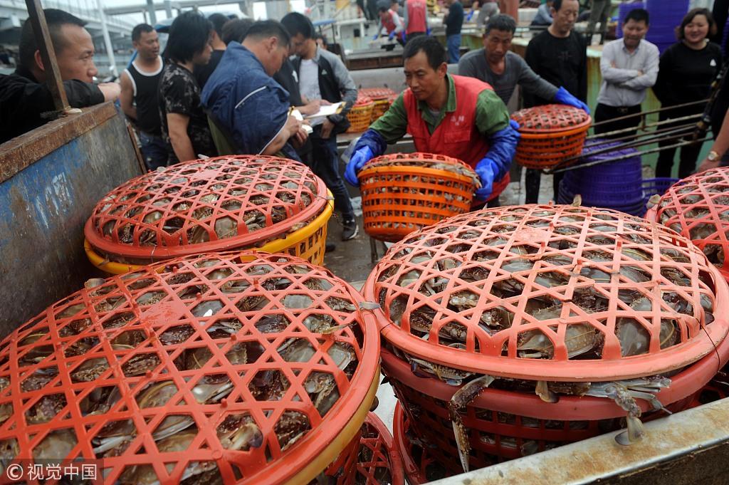 舟山国际水产城码头提前迎接伏季休渔期