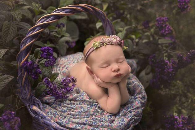 澳新生儿摄影大赛 创意作品尽显萌娃百态