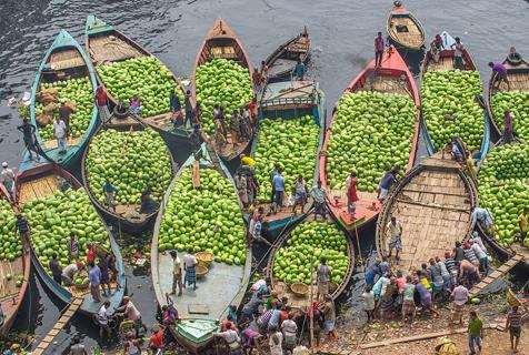 """""""水泽之乡""""孟加拉西瓜大丰收 十几条船满载而归"""