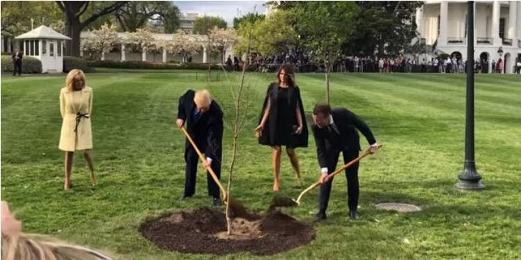 """马克龙展开对美国事访问 与特朗普种下""""友谊树"""""""