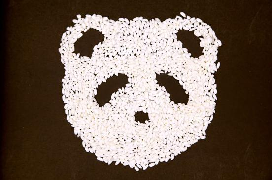 中化项目熊猫指南玩转大数据,或成未来农业大数据平台