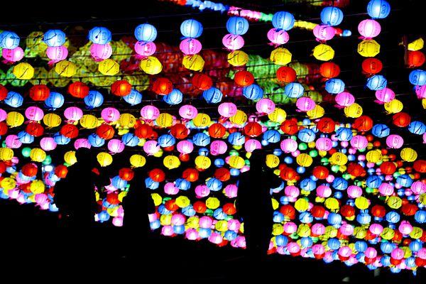 韩国釜山寺庙点亮5万个灯笼 为半岛和平祈福